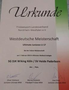 Vizemeister-Urkunde2016