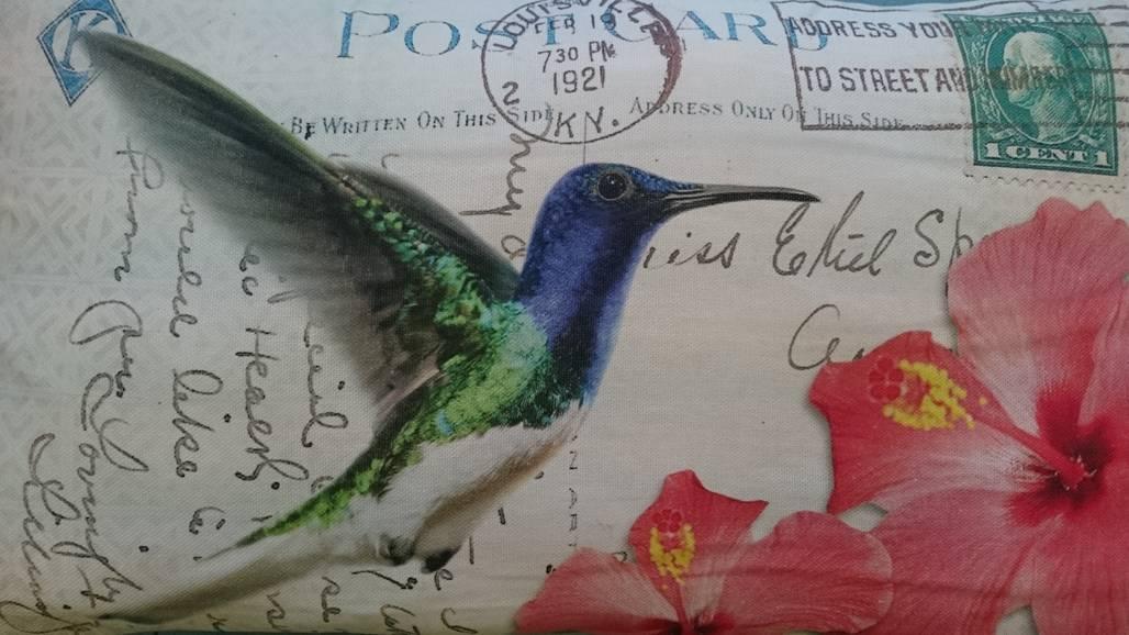 Kolibri_Postkarten_Kissen